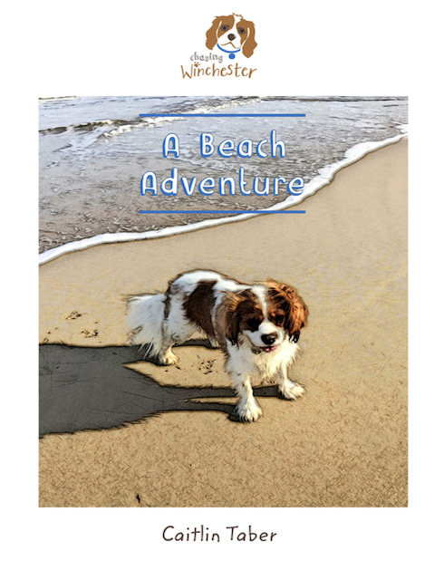 Beach Adventures Cover